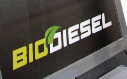 Pemerintah Mandatkan Biodiesel Bisa Implementasi Akhir Tahun ini